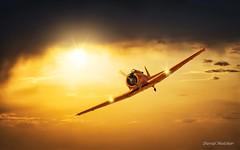 Vuelo al atardecer (dmelchordiaz) Tags: fio fundacion infante orleans avión vuelo atardecer sunset sun plane wind wing warm hot air fly