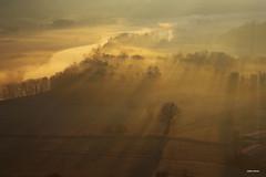 Un velo di bruma (stefano.chiarato) Tags: bruma misty nebbia fog sole sun ombre shadows alba sunrise paesaggio landscape lombardia fiume fiumeadda pentax pentaxk70 pentaxlife pentaxflickraward