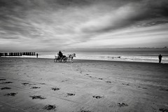 WINTERMOOD AT THE SEA (bhs-photo) Tags: bnw monochrome blackandwhite schwarzweis leica leicaq winter beach zeeland northsea domburg absoluteblackandwhite