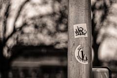 Au loin on distinguait clairement la maison aux briques orangées.  De part et d'autre, de grands arbres lui faisaient la révérence. (LACPIXEL) Tags: poteau poste post lampadaire farol streetlight arbre tree árbol maison house casa orangé orangey orangy anaranjado bokeh autocollant pegatina adhesivo sticker sony flickr lacpixel poissy poésiephotographique