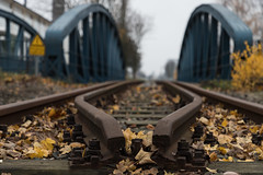 Railroad Bridge (michael_hamburg69) Tags: hamburg germany deutschland bridge metal eisenbahnbrücke railroadbridge railbridge peute hamburgveddel veddel unterwegsmitjutta photowalkmitelbmaedchen moorkanalbrücke