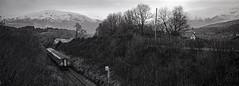 Dalmally. (christopherhogg1) Tags: chrishoggsphotos scotrail dalmallystation scotland railways dmu class156 mountains winter argyllbute