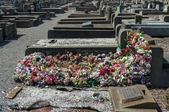 Yarraville (Westographer) Tags: yarraville melbourne australia westernsuburbs suburbia cemetery footscraycemetery grave graves plasticflowers artificialflowers graveyardflowers