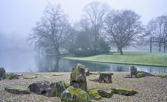 Kalte Luft (KaAuenwasser) Tags: stadtgarten karlsruhe garten park steine japanischergarten nebel kalteluft wasser stadtgartensee see baum bäume wiese pflanzen eiche hainbuchen kies landschaft januar 2020 winter