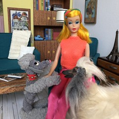 3. Puppy love (Foxy Belle) Tags: doll barbie vintage dream house living room 16 scale retro miniature dollhouse dog midge color magic beauty