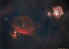 Nebulosa de Orión M42 ,nebulosa de la cabeza de caballo IC434 y nebulosa de la Llama NGC2024 (Sr Herman) Tags: orion m42 cabezacaballo ic434 llama ngc2024 nebulosa spacecat51 canon6d wo lenhance optolong bandaestrecha narrowband halfa oiii hbeta astrometrydotnet:id=nova3853584 astrometrydotnet:status=solved
