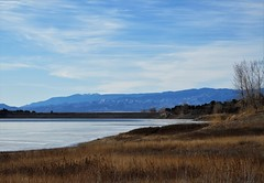 Winter Blues (Patricia Henschen) Tags: brushhollow swa statewildlifearea penrose colorado mountain mountains winter clouds trees rural countryside lake reservoir ice frozen