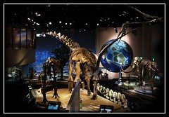 the Perot Museum to you (MoparMadman63) Tags: perotmuseum museum dinosaur exhibit fossil history science dallastx texas indoors balcony viewpoint tourism educational interior