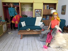 2. A visit from a friend (Foxy Belle) Tags: doll barbie vintage dream house living room 16 scale retro miniature dollhouse dog midge color magic beauty
