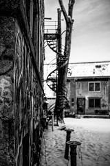 Sud-Ouest, 2020 (David G. Ouellette) Tags: sudouest elmar5cmf35 montréal
