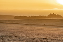never stand still ... (Woewwesch) Tags: moving morning walking cold gold sunrise further change landscape outside outdoor
