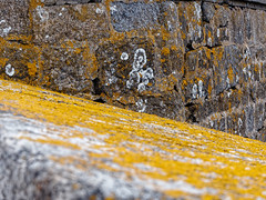 Verwitterung / weathering (vision.ing) Tags: mauer wall flechten lichen verwitterung weathering