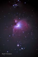 Orion nebula (rupesh.rupeshs) Tags: orion orionnebula orionsbelt astrophotography astrophotographer nikon nikond5600 300mm india kerala nightsky nebula deepskyobject deepsky ioptronskyguiferpro skyguider astrometrydotnet:id=nova3857481 astrometrydotnet:status=solved
