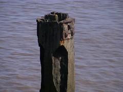 On way to Humber Bridge . Humber River (marcinb.biesek) Tags: wood bridge water uk coast sea humber hull