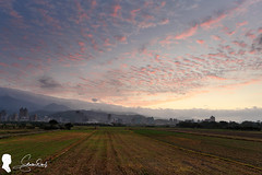 2020.1.8 日出晨彩 Sunrise (Steven Weng) Tags: 台北 canon eos5d2 ef1740 慢速快門 雲 higrace zero reverse 09 反向漸層 減光鏡 nd1000 cloud sky taiwan taipei 台灣 日出 sunrise