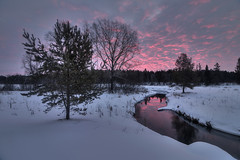 pink'n'cold (Sergey S Ponomarev) Tags: sergeysponomarev canon eos 70d efs1018f4556isstm landscape paysage paesaggio winter inverno sunrise snow neve hdr highdynamicrange russia russie russland europe kirov vyatka river clouds dawn сергейпономарев пейзаж природа река рассвет киров вятка россия зима холод мороз облака снег деревья лес woods forest frost cold north nord