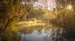L'éveil (JDS Fine Art Photography) Tags: landscape trees sunrise sunrays sunburst inspirational beauty lake water naturepark nature glorious elitegalleryaoi bestcapturesaoi aoi