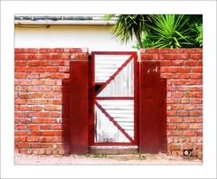 Brick Wall (Daniela 59) Tags: wall bricks brickwall door metal corrugatediron garden gardenwall wednesdaywalls windhoek namibia danielaruppel