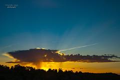 UFO (mariola aga) Tags: evening sky sun sunset clouds light sunlight sunrays trees silhouette wideangle nature coth coth5