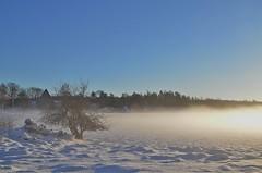 5/2 2018. (johnerlandaxelsson@gmail.com) Tags: uppland sverige vinter natur landskap landscape johnaxelsson