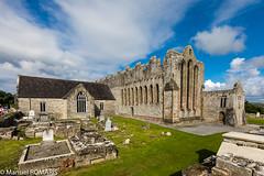 Ardfert, Ireland (Manuel ROMARIS) Tags: cathedral ruins ireland ardfert