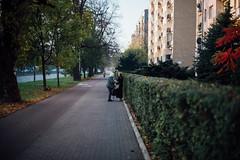 The Conspirators (ewitsoe) Tags: autumn d750 nikon street warszawa erikwitsoe poland urban warsaw women gossip sidwewalk talking twowomen hedge neighborhood neighbors ladies morning