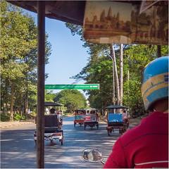 Mit dem Tuktuk zum Angkor Wat, Cambodia (Janos Kertesz) Tags: tuktuk cambodia angkor asia travel tourism asian culture tree siem reap stone temple nature khmer old