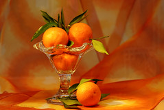 Oranges (Elisafox22) Tags: elisafox22 sony ilca77m2 100mmf28 macro macrolens telemacro lens hbw bokehwednesday bokeh oranges leaves orange green glass bowl scarf stilllife bright winter elisaliddell©2020