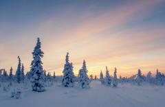 Lovely Lapland (ikkasj) Tags: lapland finland snow frost sky polarnight polarnacht kaamos skiing crosscountryskiing sammaltunturi pallasyllästunturinationalpark