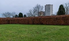 Hidden (jefvandenhoute) Tags: belgium belgië antwerpen light fredegandus graveyard