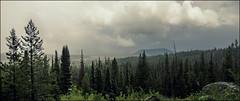 Snowstorm incoming - Panorama - Grand Teton Nationalpark, Wyoming (André-DD) Tags: nationalpark usa unitedstatesofamerica wyoming grandtetonnationalpark grandteton teton grand bäume baum trees tree snowstorm storm sturm schneesturm frühling spring panorama view aussicht hike wanderung schnee snow