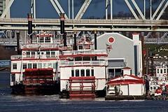 Sternwheelers (durand clark) Tags: riverboat sternwheeler paddleboat bbriverboats ohioriver newport newportkentucky northernkentucky bridge taylorsouthgatebridge nikond750