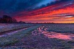 Morning walk (jacquelineermens) Tags: sunrise colors ettenleur polder nikonnl netherlands