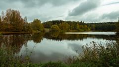 Herbst am Teich  (2) (berndtolksdorf1) Tags: deutschland thüringen teich jahreszeit herbst autumn wasser bäume büsche wald landschaft landscape outdoor