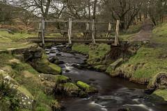 Footbridge (l4ts) Tags: landscape derbyshire peakdistrict darkpeak padleygorge burbagebrook footbridge longexposure longshawestate circularpolarisingfilter