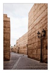 Une rue de Marrakech (Jean-Louis DUMAS) Tags: maroc rue ruelle ocre palmier arbre voyage voyageur trip travel traveler ville marrakech