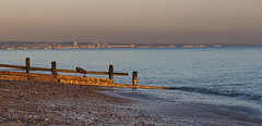 Gold coast of Sussex (Through Bri`s Lens) Tags: sussex worthing brighton shorehambysea groyne sunset light beachphotography brianspicer canon5dmk3 canon1635f4