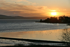Invergowrie Bay Sunset (eric robb niven) Tags: ericrobbniven scotland dundee landscape rivertay sunset springwatch
