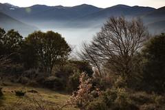 donde había nieve, ahora hay niebla (*BegoñaCL) Tags: waking hike nature sierradelademanda larioja fog niebla montaña mountain cresta begoñacl bg~ reto