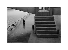 Bilbao 2020 (oiZox) Tags: bilbao bizkaia euskadi euskalherria europa travelling town travel urban ombreeluci orlandoimperatore people photography paisvasco pais paseo light life licht lux journey joy human happiness guggenheim fotourbana fotocallejera fujifilm streetphotagraphy street shadow silhouette spain streetphotography streetphoto streetohotography arquitecture acros zox zoximage xpro2 city citta ciudad cityscape viaggiare vizcaya vasco bw blanconegro blackwhite bnw blackandwhite bnwphotography bnwphoto bnwdemands monochrome mono