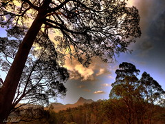 A Tasmanian Landscape at Sunset (Lani Elliott) Tags: scene scenic sunset tasmania tasmaniansunset view vista trees sky clouds scenictasmania rossarden silhouette silhouettes light bright nature naturephotography landscape tasmanianlandscape mountain benlomondnationalpark