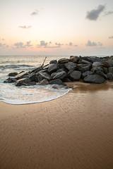 Down by the Sea, Negombo (Geraint Rowland Photography) Tags: downbytheseabygeraintrowland grrphotography sand beach coastal coastline beachholidays visitsrilanka settingsunovertheoceantakenatnegombobeachinsrilanka canonphotography tourismphotography gettyimages wwwgeraintrowlandcouk