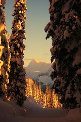 ~Into The Light~ (cowgirlrightup) Tags: canada snow sunset mountains