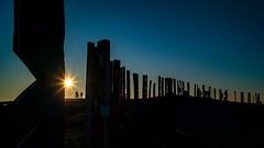 Auf der Halde Haniel (Perspektivenwechsel / Fotografie Sabine Werfel) Tags: haldehaniel halde haldenkunst bottrop ruhrgebiet ruhrpott metropoleruhr sonnenuntergang abendstimmung abendlicht