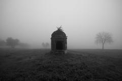 Campagna toscana (Cristianella) Tags: countryside paesaggio blackandwhite campagna fog nebbia pozzo well abbandonato abandoned