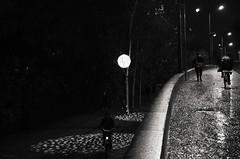 A tous les niveaux (Atreides59) Tags: lyon rhone rhône alpes rhônesalpes auvergne auvergnerhônealpes urban urbain street pentax k30 k 30 pentaxart atreides atreides59 cedriclafrance vélo cycle bicycle nuit night people lumière light black white bw blackandwhite noir blanc nb noiretblanc et