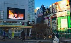 Japan- Tokyo (venturidonatella) Tags: japan giappone tokyo street strada streetlife streetscene streetphotography colori colors gentes gente people persone nikon nikond500 d500 verde green luce ombra light shadow