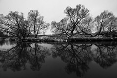 Winter Classic (gubanov77) Tags: blackwhite bw blackandwhite monochrome winter river water reflection trees branches istrariver istra nature landscape russia woods