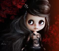 Malice 🌹 (pure_embers) Tags: pure embers blythe doll dolls laura england uk custom gbaby malice takara neo hair black grey mohair reroot girl photography beautiful portrait red