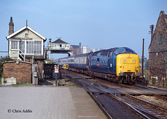 Early Days (chrissyMD655) Tags: class 55 deltic 55013 ecml selby